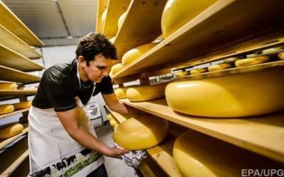 Импорт сыров в Украину резко вырос