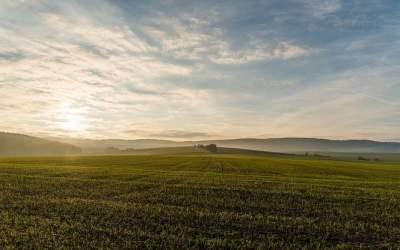 В Украине запустят электронные земельные аукционы