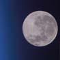 Американка судится с NASA из-за лунной пыли