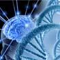 Ученые создали светящиеся микролазеры, которые будут изучать работу мозга