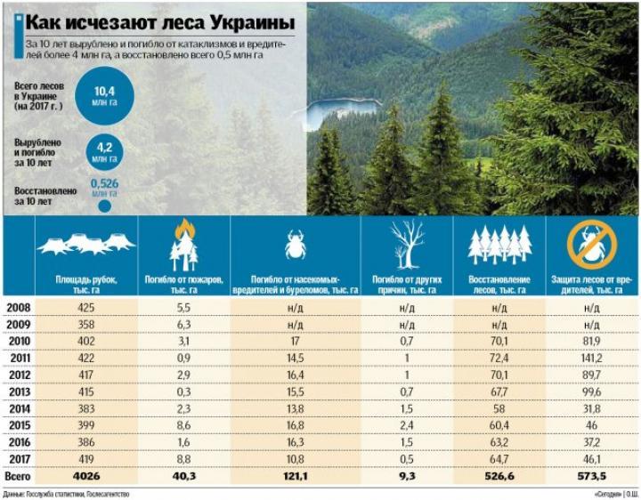 Масштабы вырубки украинских лесов за последние годы (инфографика)