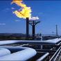 Объем валового потребления природного газа увеличился (инфографика)