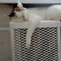 В Кабмине хотят запретить отключать тепло во время холодов
