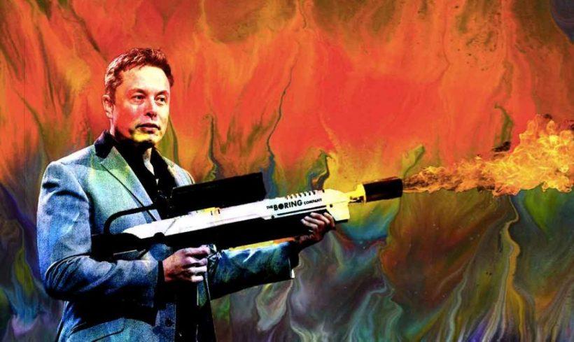 Илон Маск: хочу получить ETH, даже если это скам