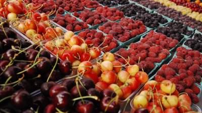 Украина увеличила экспорт плодов и ягод
