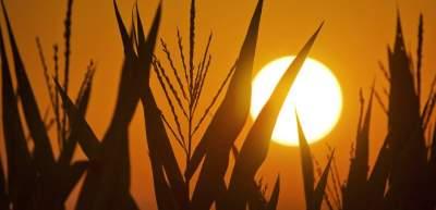 В Украине запустилась мощная солнечная станция